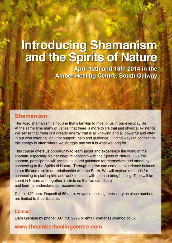 ShamanicWorkshop